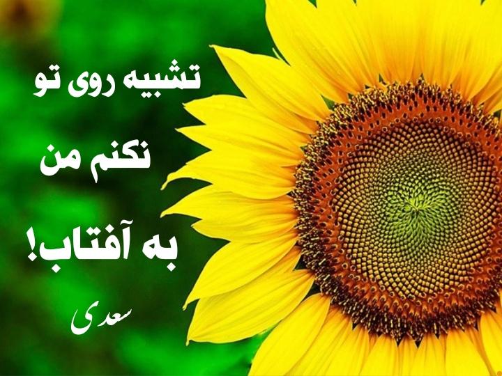 تشبیه 5 – دکتر ایلیا(حسین محمدی مبارز)